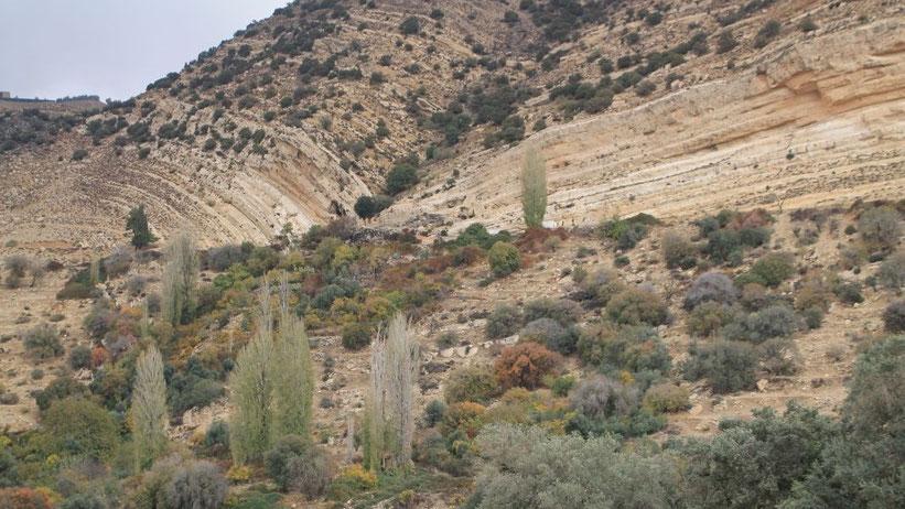 Dana Biosphärenreservat, Jordanien