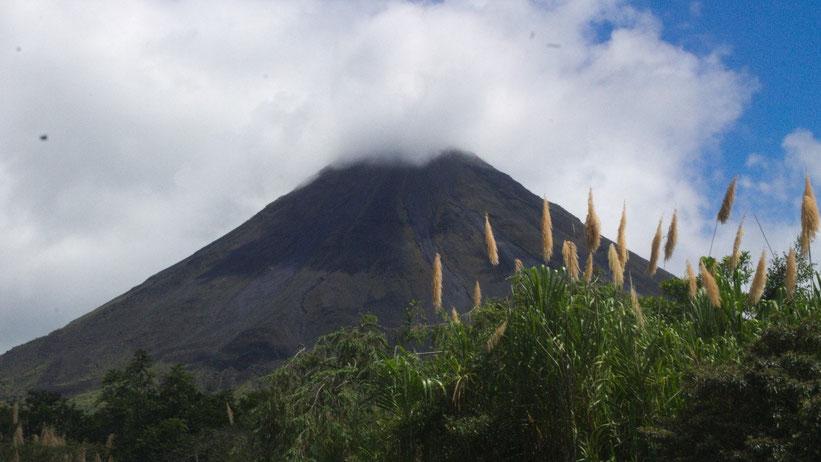 Vulkanwandern Volcán Arenal, Costa Rica