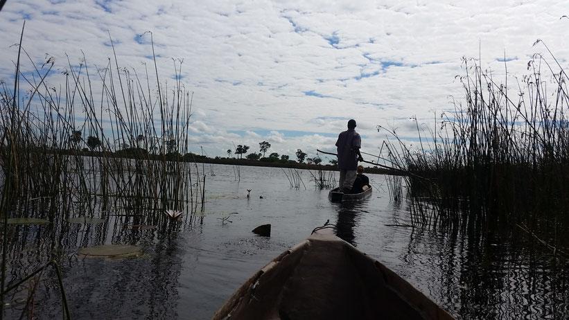 Mokoro-Fahrt durchs Okavangodelta, Botswana