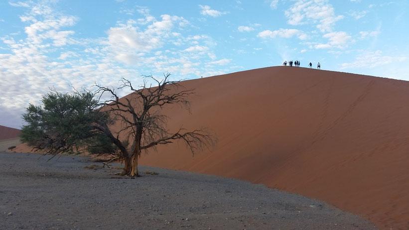 Dünen-Tour durch das Sossusvlei, Namibia
