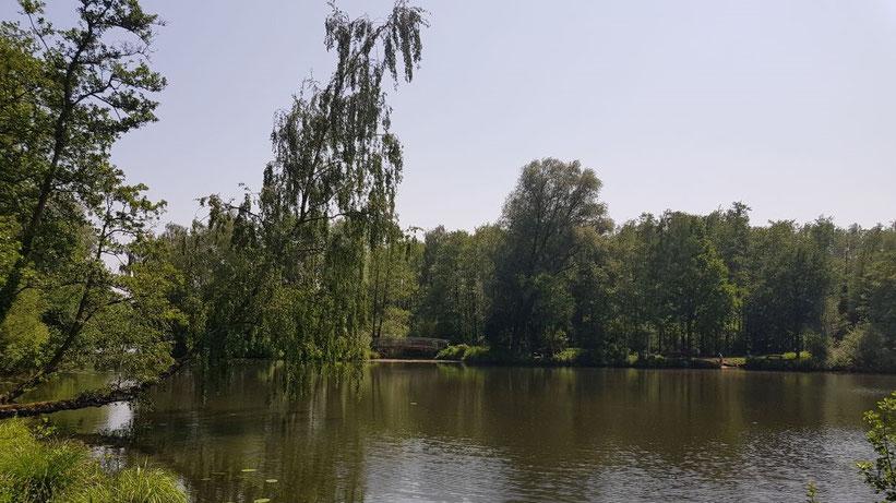 Borner See, Nordrhein-Westfalen