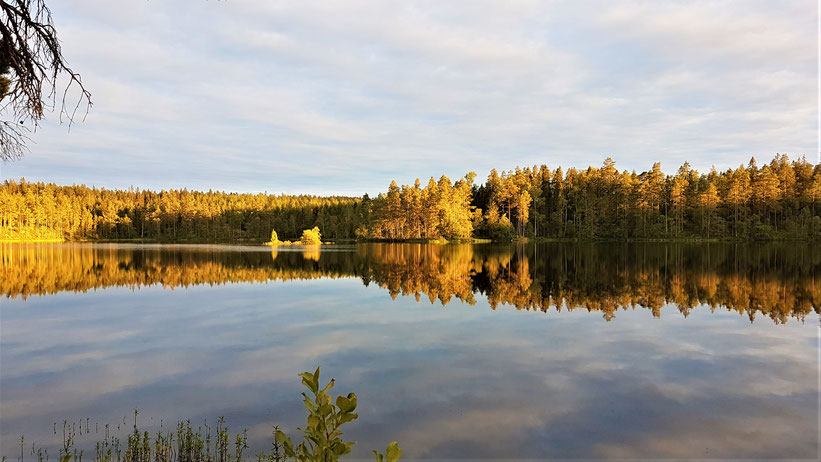 Schweden See Sonnenuntergang overland Travel Camping #ProjektBlackwolf Schweden Skandinavien wolf78  explore without no limits roadtrip offroad Overlandingnomads Dachzeltnomaden wolf78-overland.ch