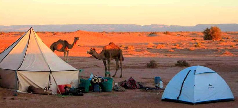 bivacco nel deserto