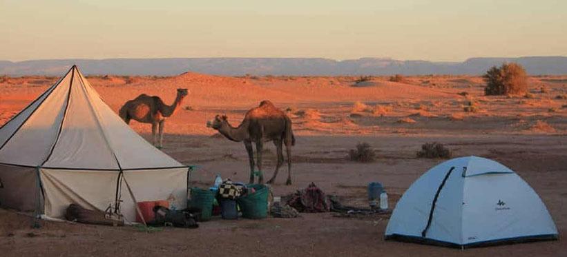 bivacco sahara harmony desert come dormire nel deserto