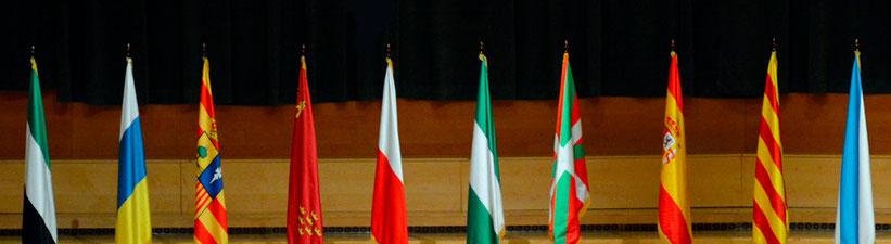 banderas-raso-institucionales-organismos-publicitarias-personalizadas-don-bandera