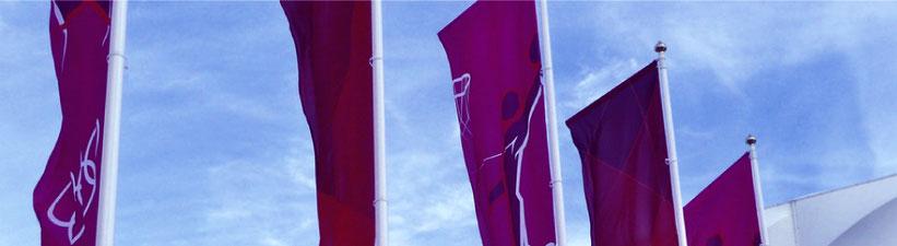 banderas-verticales-potencia-banderolas-don-bandera