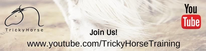TrickyHorse auf Youtube - Videos - Infos - Coole Übungen