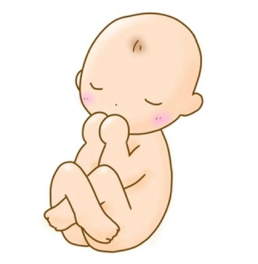 ②逆子の胎位 全複殿位の胎動は下腹部を良く蹴る