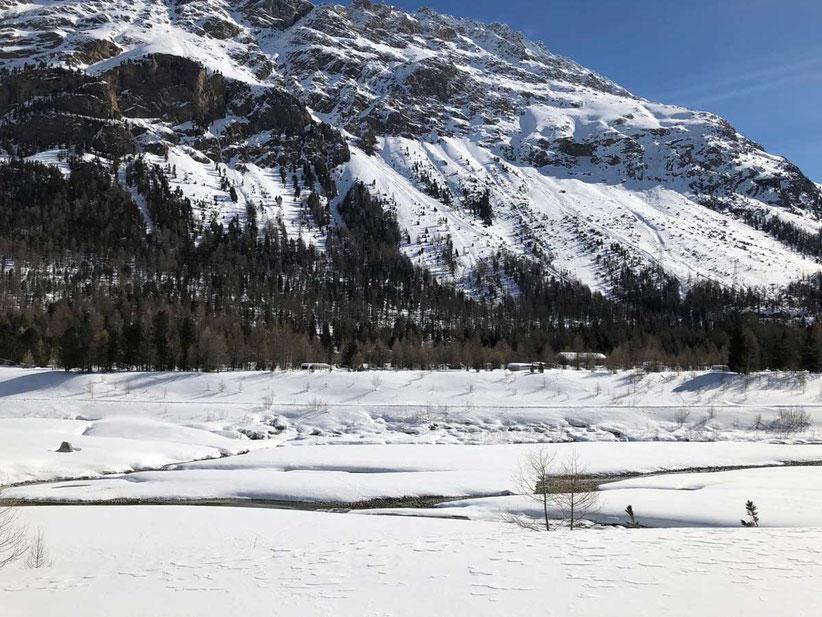 Natur Campingplatz Morteratsch Winter Schweiz Engadin