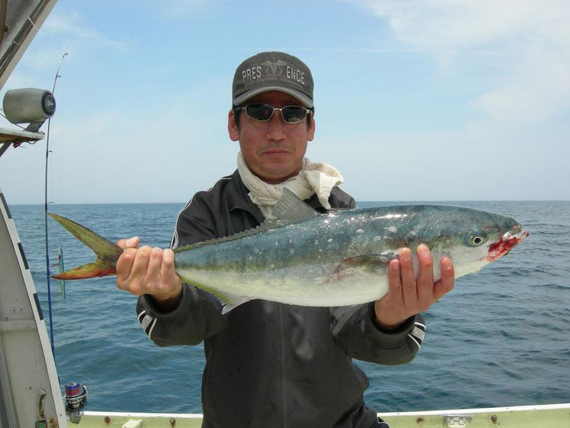 オフショア初釣記念のメジロ。タイラバボトムで。