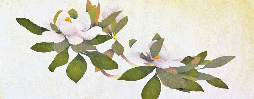 Magnolia-1   33x83cm