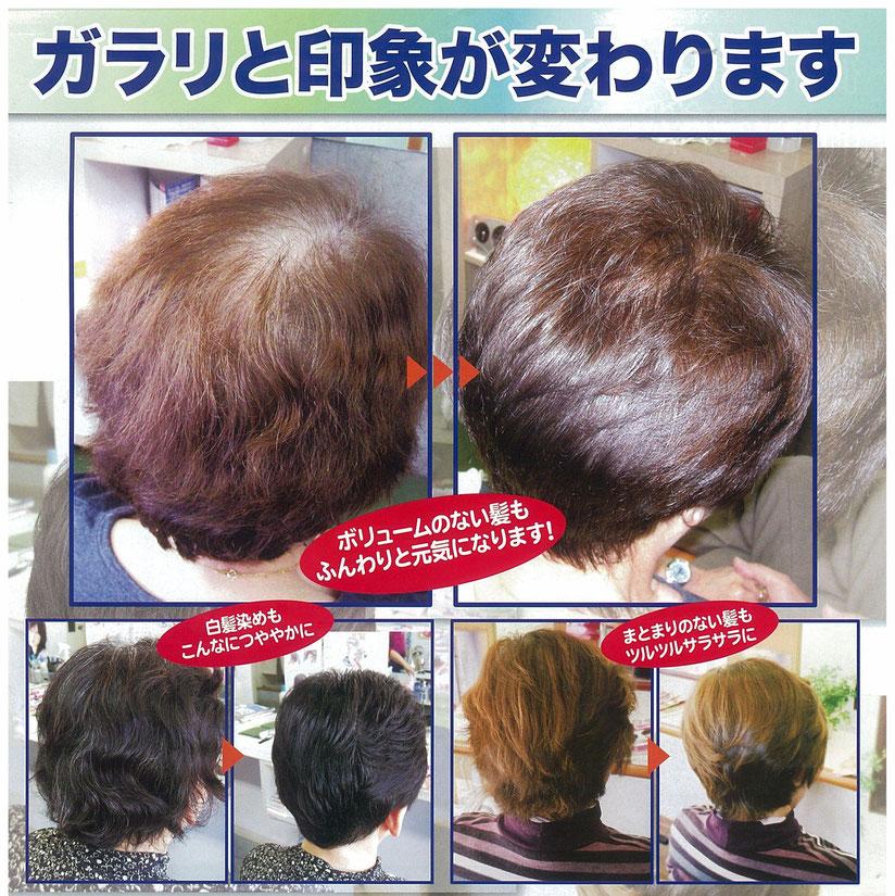 ヘナカラー 草木染め 艶 髪 髪にボリューム 髪まとまる 白髪染め 髪修復 髪補修