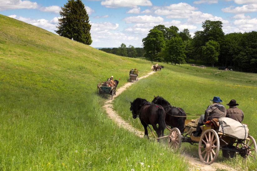 Žirgų kinkiniai atrieda prie Šatrijos kalno