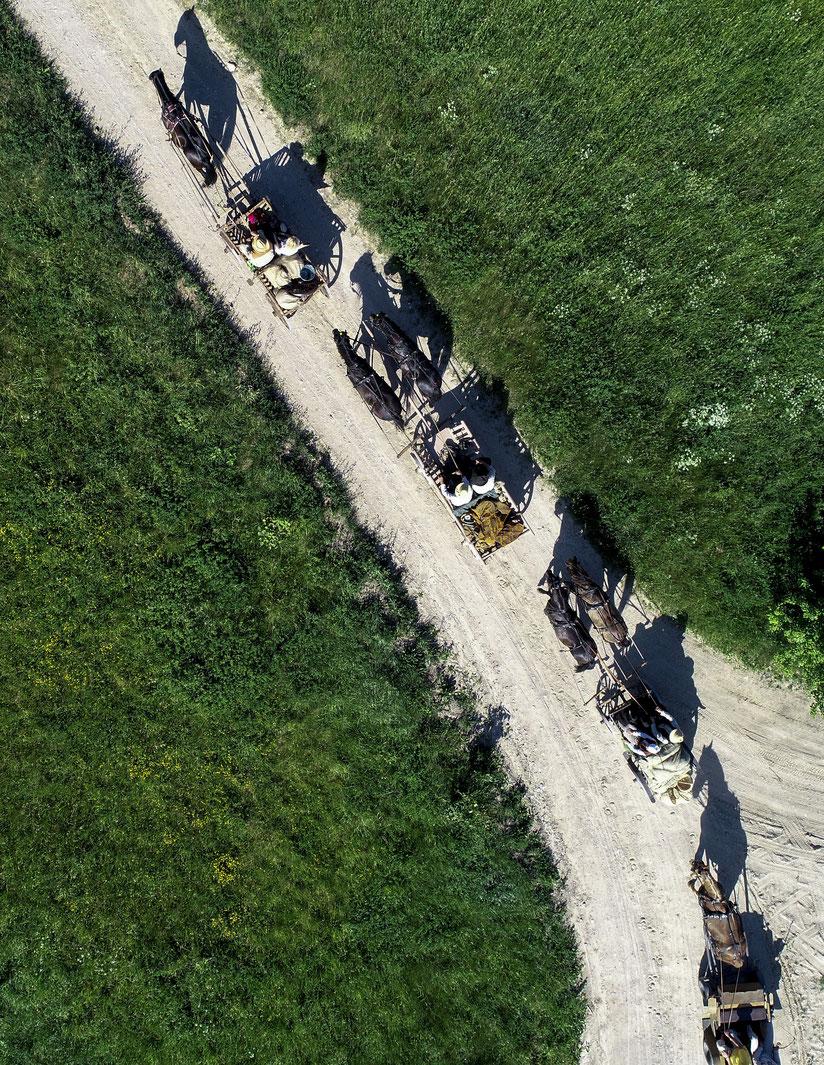Žemaitukų traukiami vežimai kelyje