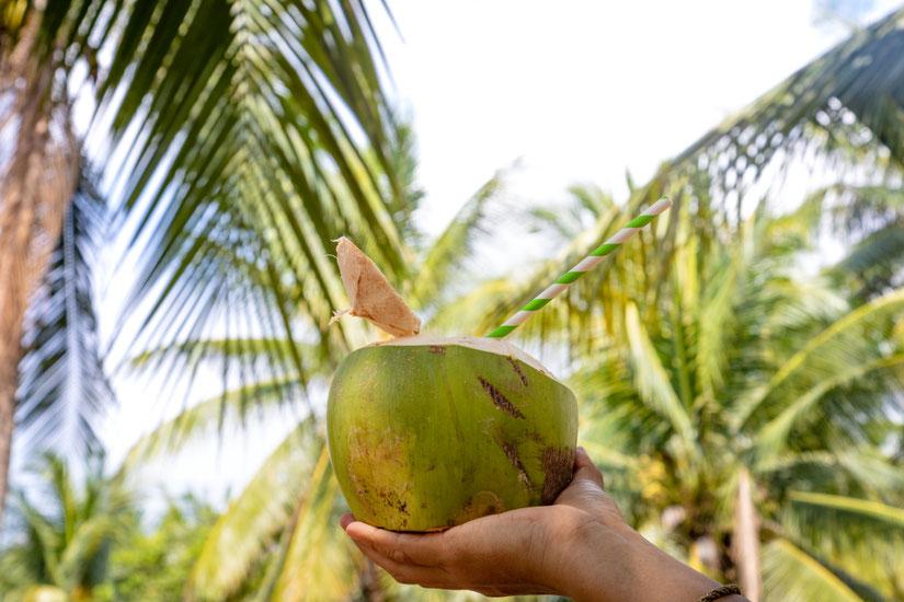 Kokoso vanduo - gaiviausias gėrimas Tailando paplūdimyje
