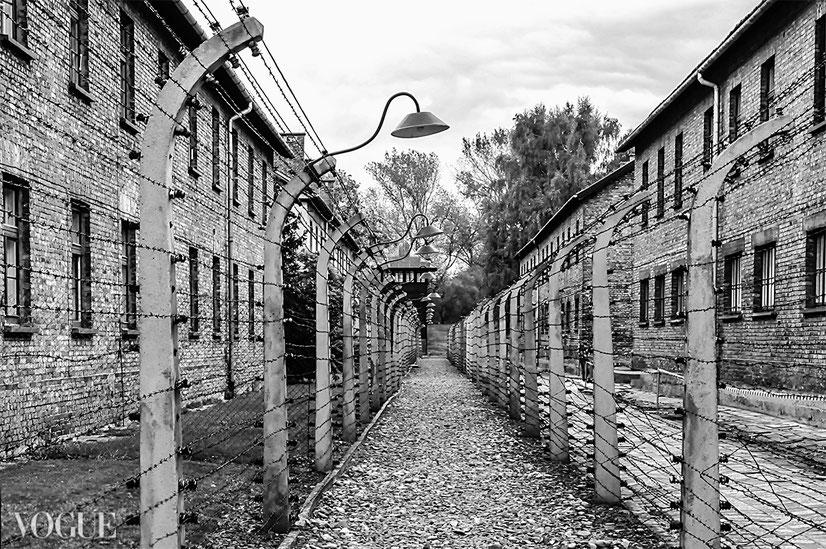 """""""Il silenzio dopo l'inferno"""", Per Non Dimenticare: Auschwitz ~ Selezionato Photo Vogue Italia"""
