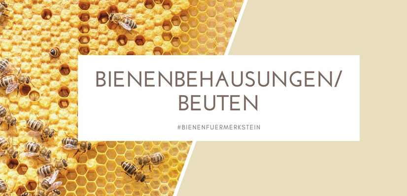 Biene M, Biene, Biene Maja, Bienenstock, Beute, Imker werden, imkern, bienenbox, Bienenkiste, Bienenschwarm, Bienenvolk, Honigbiene