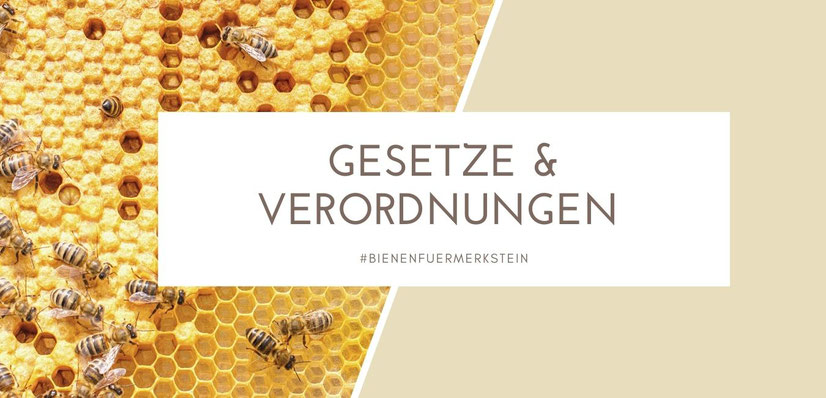Biene Maja, Imkern, Imkerei, Honigbiene, Bienenstock, Standplatz für Bienen, Bienenkönigin, Imker werden, mit Bienen anfangen, Bienenkiste, Bienenschwarm, Bienenzucht, Bienenvolk