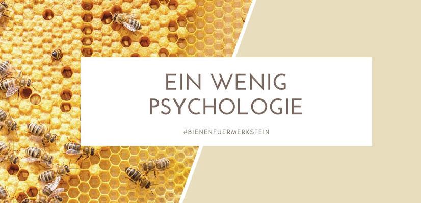 Biene Maja, Imkern, Imkerei, Imker in der Nähe, mit Bienen anfangen, imker werden, Honigbiene, Bienenstock, Bienenkiste, Bienenfreunde, Bienenpflanzen, Bienenblumen, Bienenzucht, Bienenschwarm