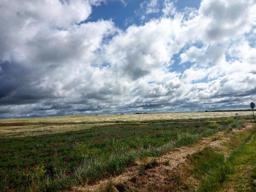 cammino di santiago, Mesetas