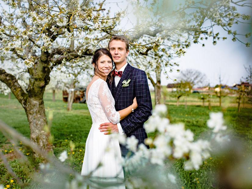 Ein Brautpaar steht in einer blühenden Streuobstwiese. Hochzeitsfotograf München