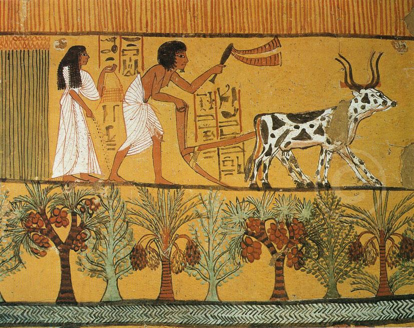 Tomba di Sennedjem, un funzionario vissuto durante la XIX dinastia - Deir el Medina (Luxor)
