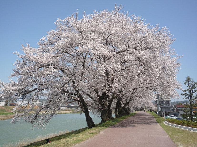 岐阜県多治見市の昭和クレーンより、地元多治見の魅力をお伝えします