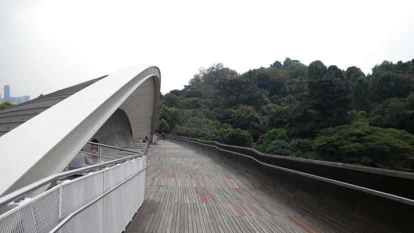 Henderson Waves Brücke