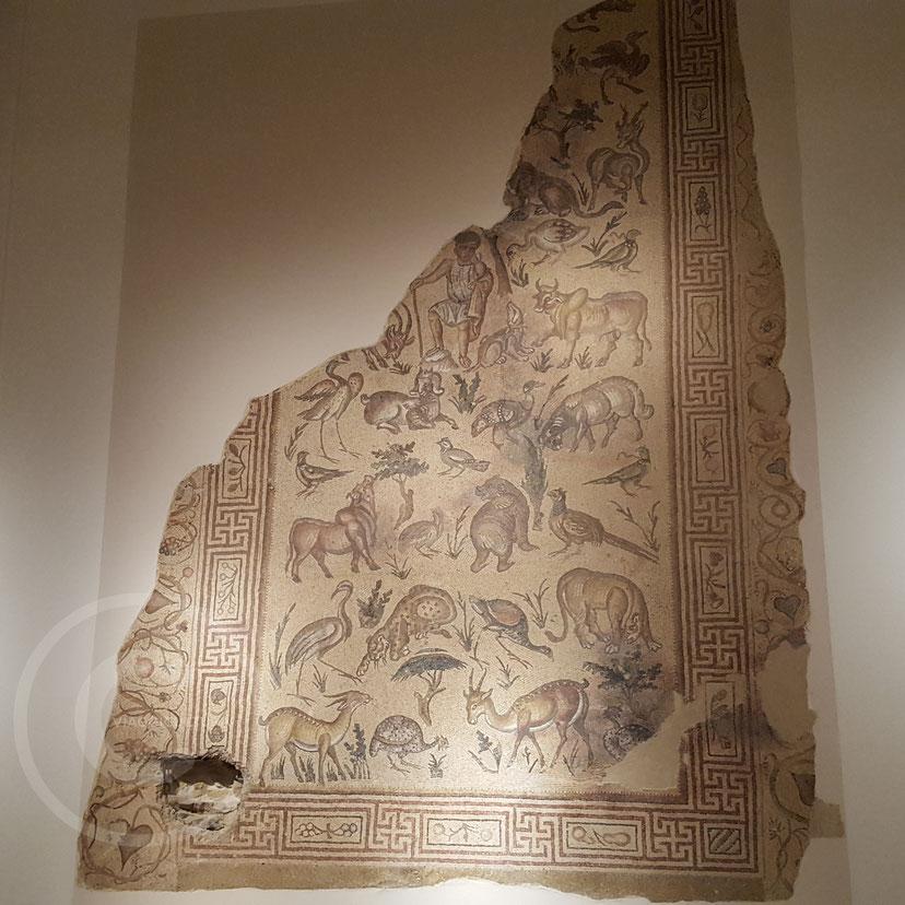 Mosaico del Buon Pastore (V-VI sec. d.C.) con il buco fatto dai cecchini per sparare all'esterno del museo - Museo Nazionale di Beirut