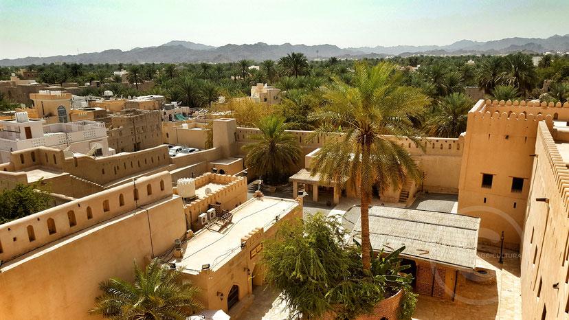 Vista dal Forte di Nizwa, Oman