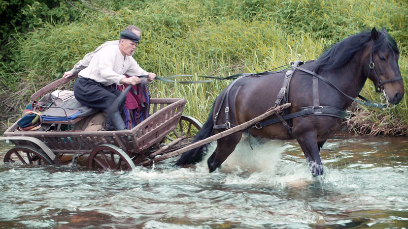 Žemaitukas su vežimu upėje