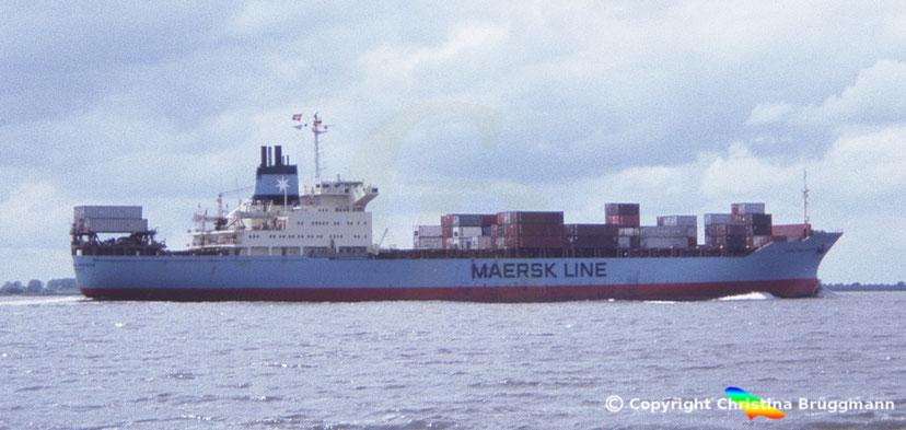 Maersk Line Containerschiff CLIFFORD MAERSK (Umbau aus Stückgutfrachter 1980) 1986
