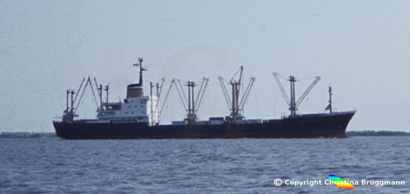 "Hapag-Lloyd Stückgutfrachter ""HEIDELBERG"" auf der Elbe 1983"