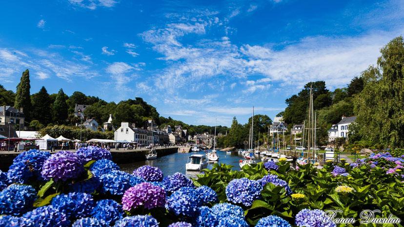 petit port de Pont-aven et ses hortensias dans le Finistère en Bretagne