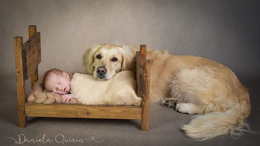 Newborn mit Hund 2019