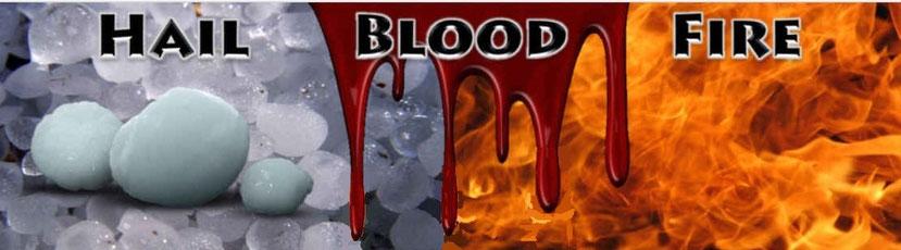 La vision est terrifiante. La prophétie annonce qu'à la première sonnerie de trompette la grêle, le feu et le sang vont s'abattre sur la terre causant de terribles dégâts, brûlant le tiers de la terre et des arbres et la totalité de l'herbe verte !