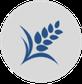 Icon Ähre Organisationsentwicklung