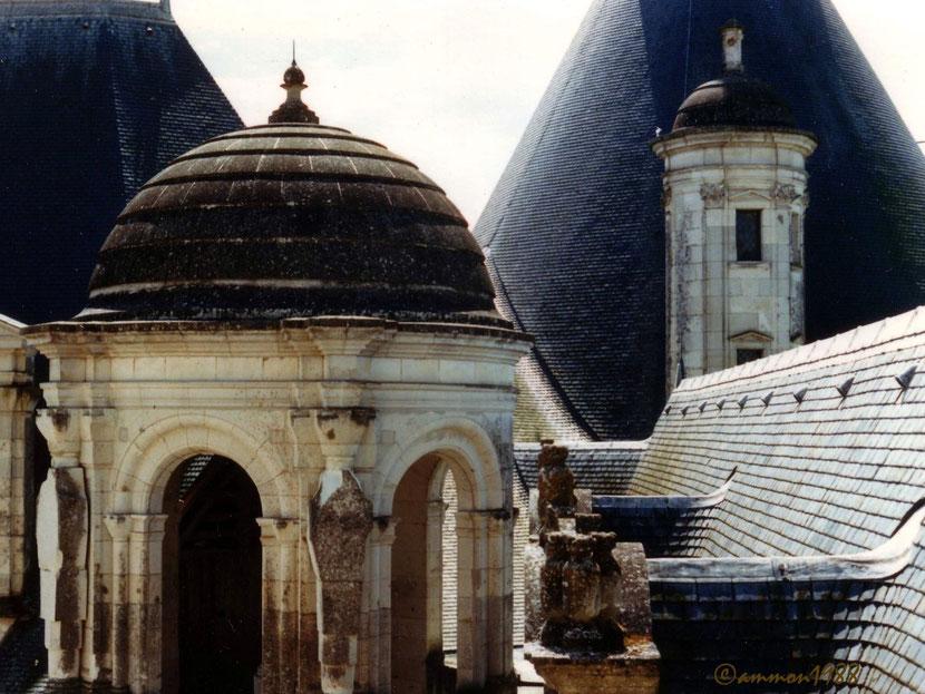 Sur les toits de Chambord