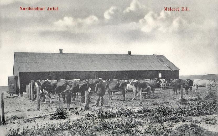 1911 Meierei BILL