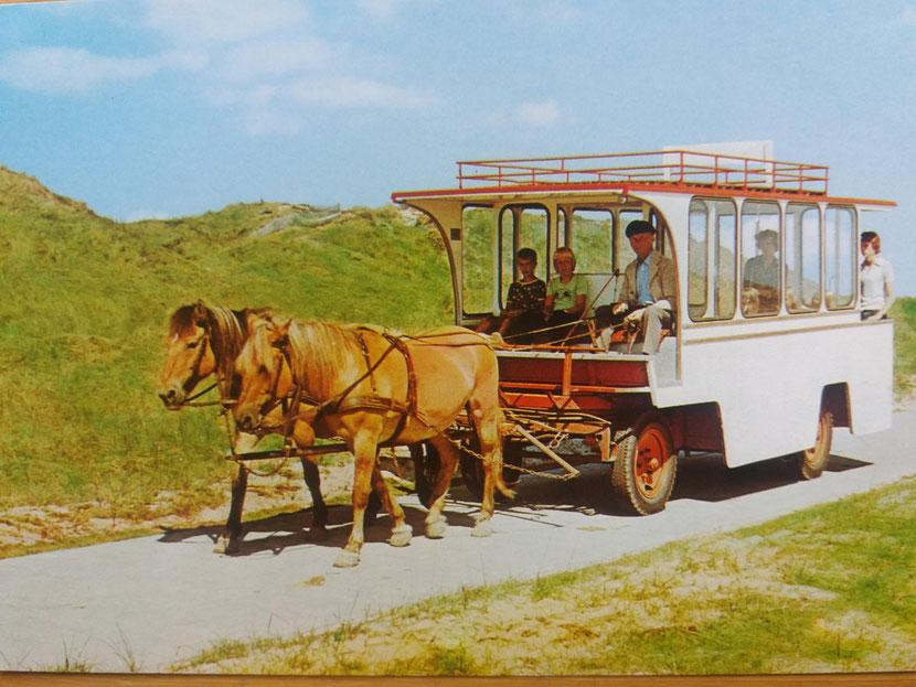 Pferdebuss der Fa. Munier auf der Flugplatzstraße  in den 1970igern....