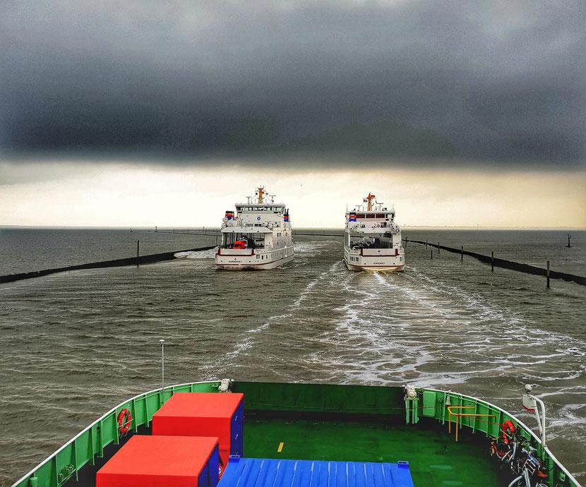 Auf nach Juist mit der Frisia II. Vor uns die Fähren von und nach Norderney. Foto © Familie Ringstmeyer, Westfalen Hof