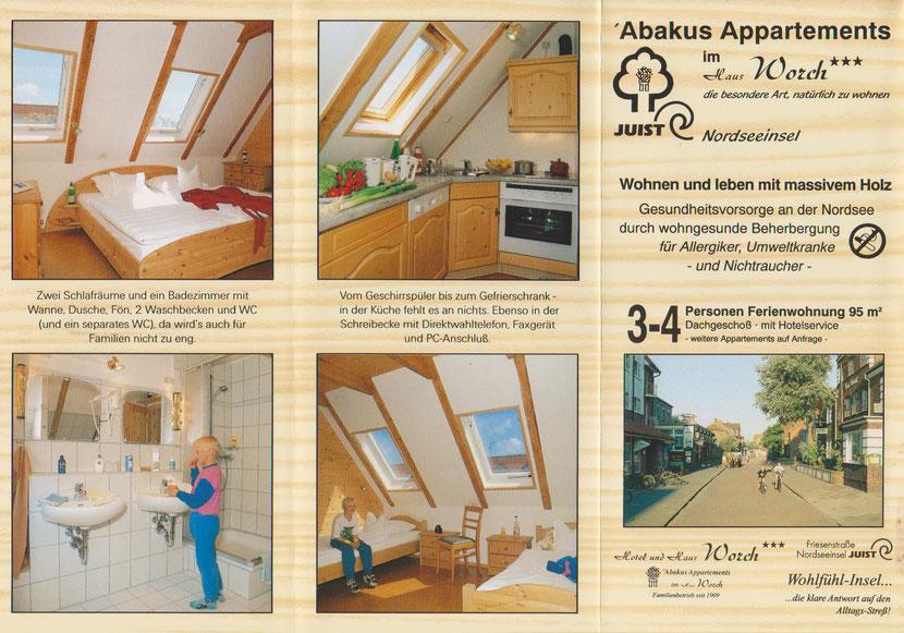 Winter 1994/95 Um- und Ausbau des Dachboden des HAUS Worch zur Allergiker - Ferienwohnung.