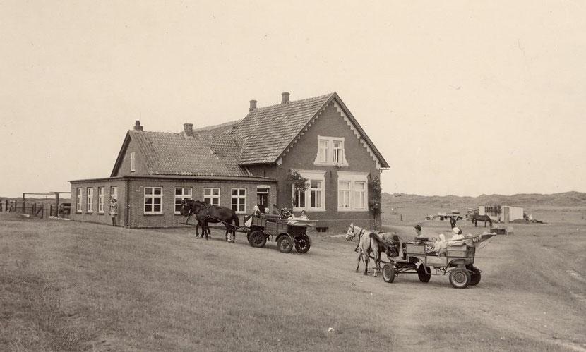 1950iger