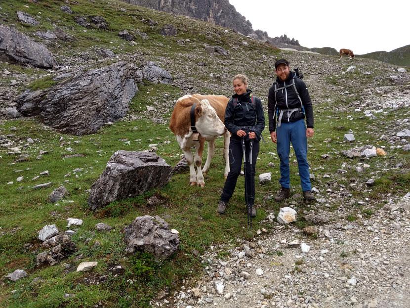 Kühe oberhalb der Karalm