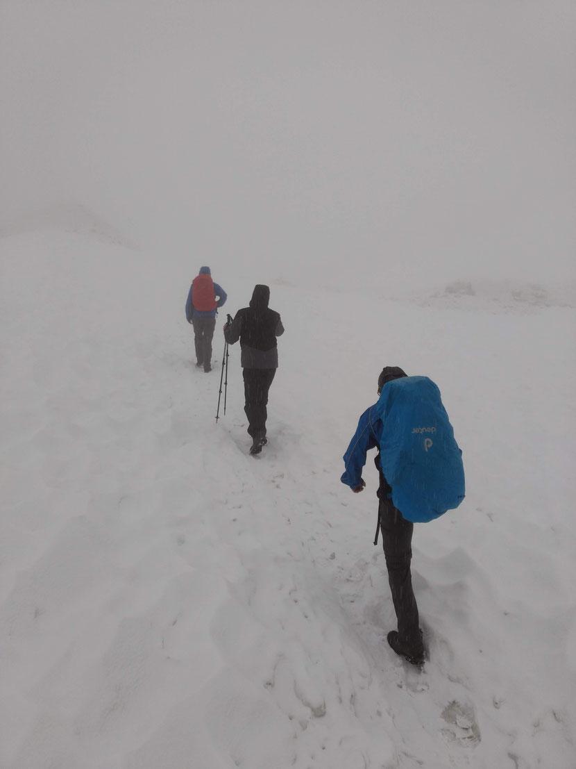 Geschlossene Schneedecke ab 2.300m