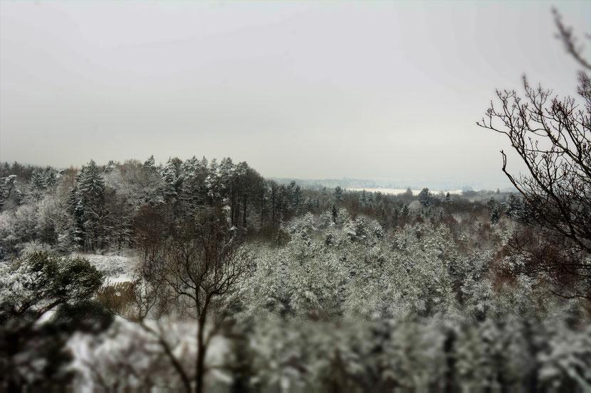 Blick vom Napolenturm im Winter