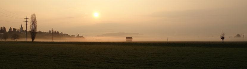 morgen Nebel in Wigoltingen