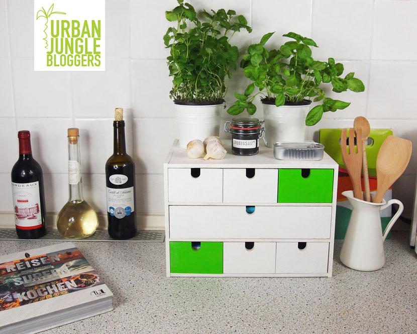 Küchenkräuter Küchen-Kräuter Urban Jungle Bloggers UrbanJungleBloggers Blogger Pflanzen Plantlove Alltagsabenteuer Alltagsabenteurer