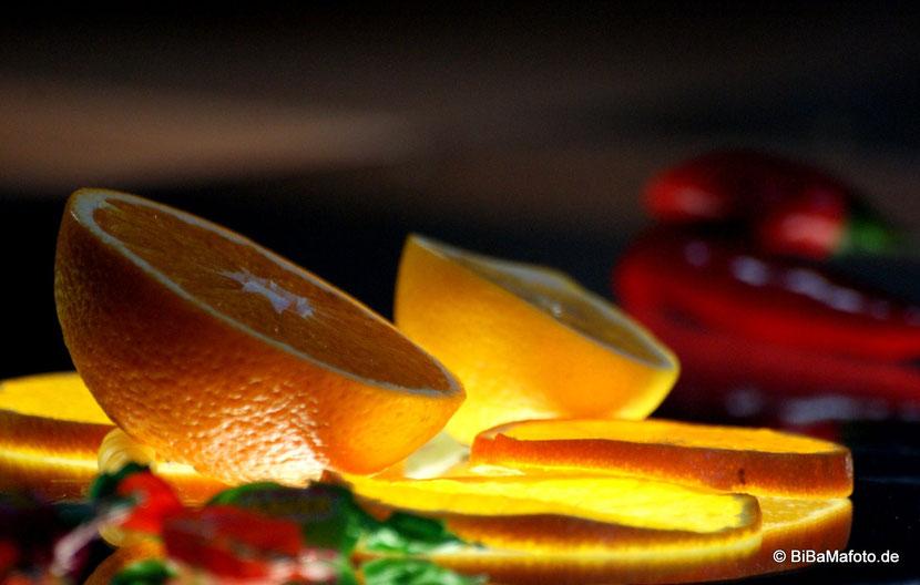 """Appetit auf mehr? Neues von der """"Fotosafari """"..."""