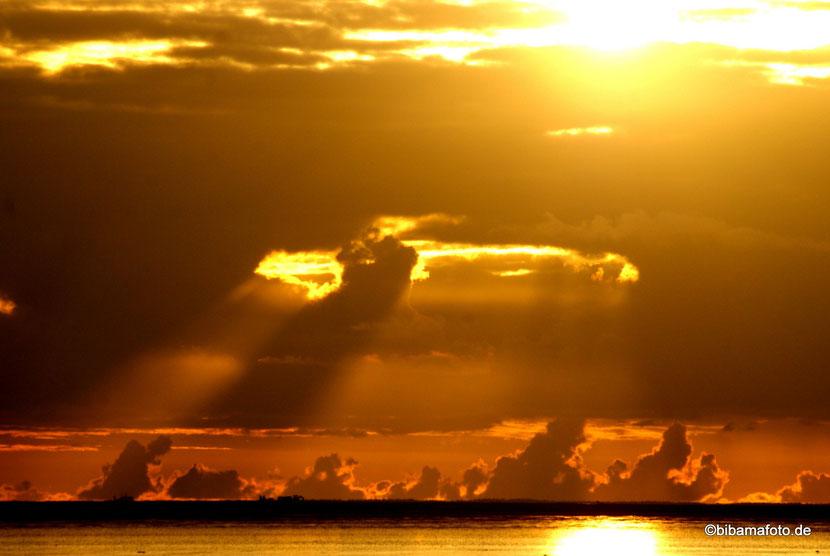 Fotosafari ... es geht wieder los! Ziel diesmal: Die blaue Stunde! :)